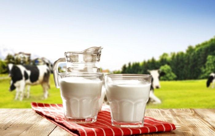 وجود وایتکس در شیر تکذیب شد