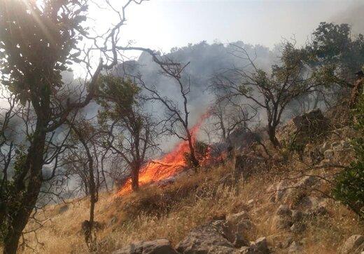 زنگ هشدار آتشسوزی در ۱۲ شهر استان اصفهان به صدا درآمد