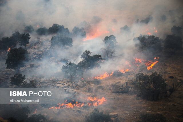 عاملان آتش سوزی جنگلهای خائیز دستگیر شدند