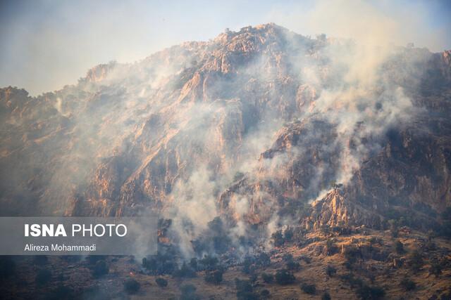 نقش پررنگ خطای انسانی در آتشسوزی جنگلها
