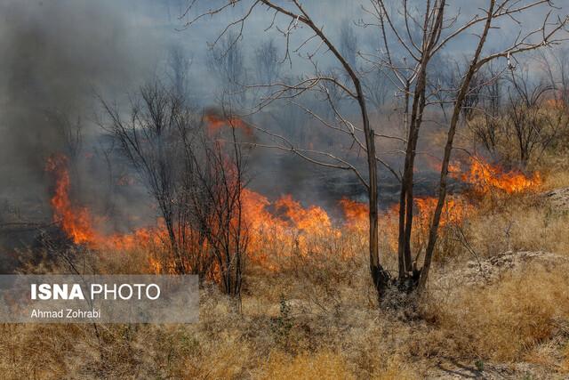 آتشسوزیها، مشکوک یا طبیعی؟